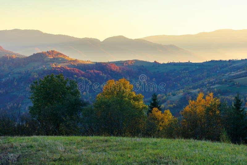 Paysage merveilleux d'automne à l'aube photographie stock libre de droits