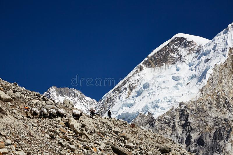 Paysage montagneux de l'Himalaya Vallée large et caravane de yak aux beaux jours ensoleillés photographie stock libre de droits