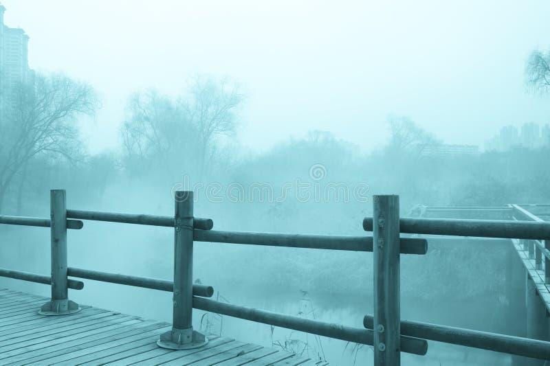 Paysage mystérieux de brouillard photo stock