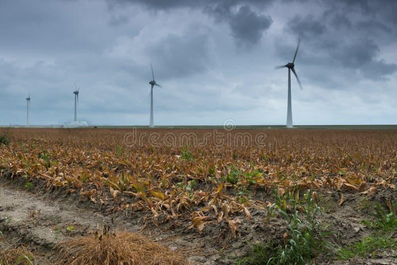 Paysage néerlandais avec des turbines de vent photographie stock