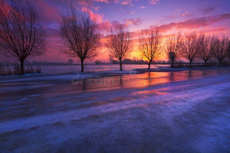 Paysage néerlandais d'hiver photo stock