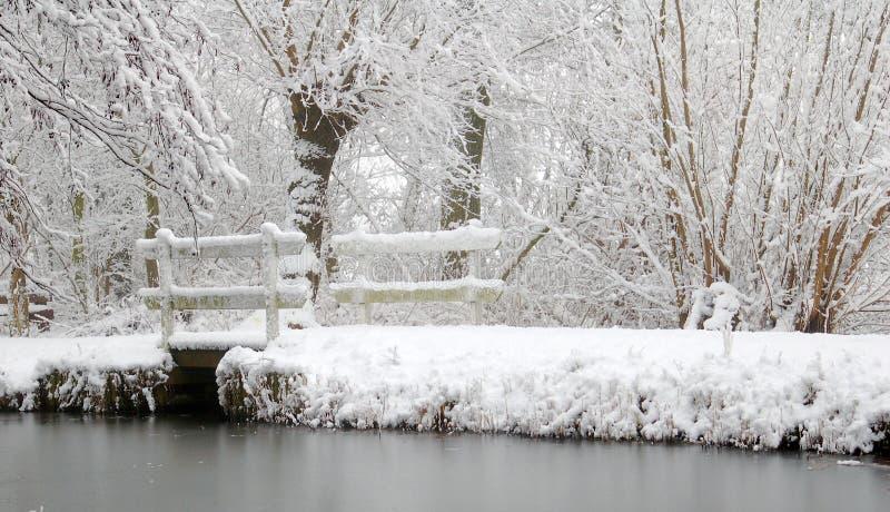 Paysage néerlandais de neige avec le lac et les arbres photos libres de droits