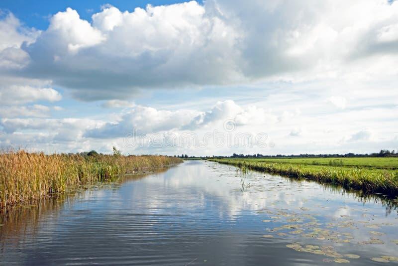 Paysage néerlandais typique avec les prés, l'eau et les cloudscapes image libre de droits