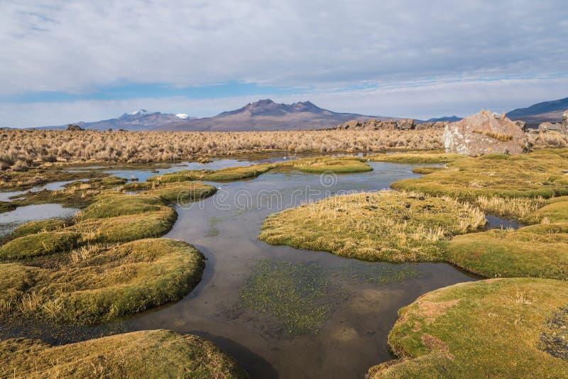 Paysage naturel d'Altiplano photo stock