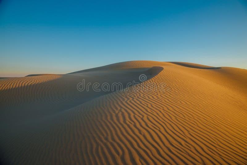 Paysage naturel de désert, dunes de sable Désert de Senek dans le Kazakhstan occidental images libres de droits
