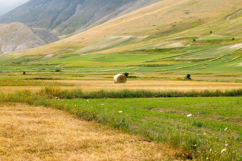 Paysage naturel de la plaine de Castelluccio di Norcia Apennines, Italie photos libres de droits