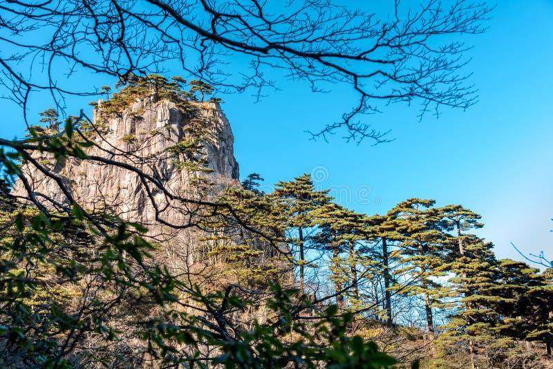 Paysage naturel de site de patrimoine mondial de l'UNESCO beau de montagne de jaune de paysage de montagne de Huangshan dans Anhu photographie stock libre de droits