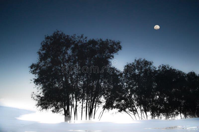 Paysage naturel la nuit de lune photographie stock libre de droits
