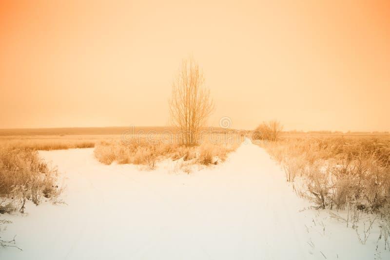 Paysage naturel provincial russe par temps sombre toned photographie stock