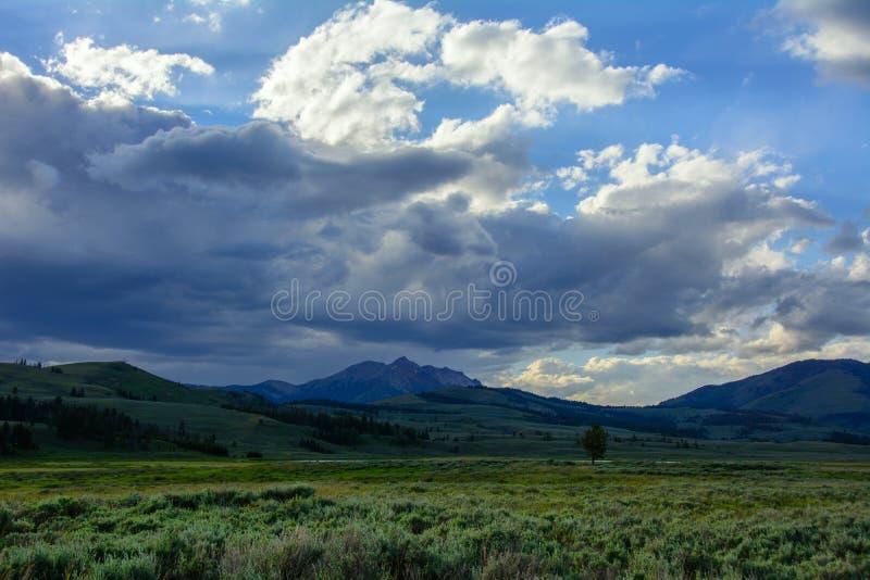 Paysage nuageux en parc national de Yellowstone, Wyoming image stock