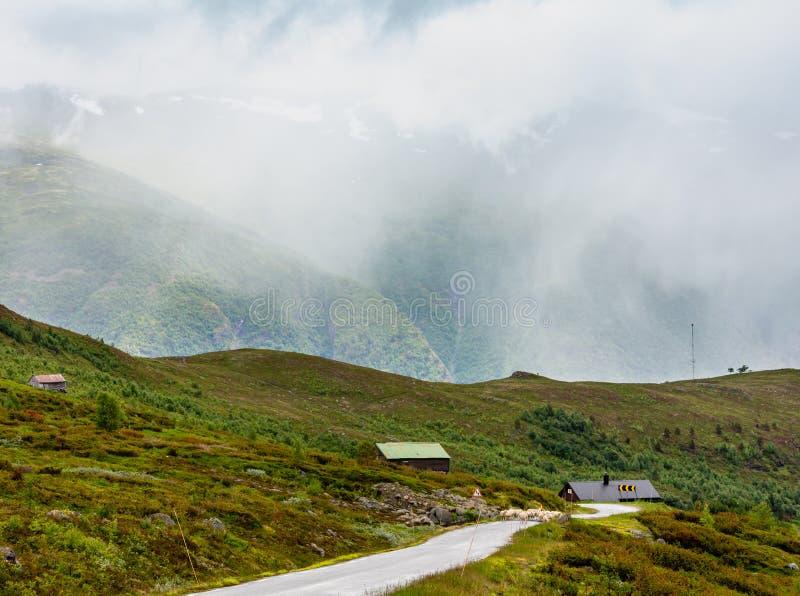 Paysage nuageux Norvège de montagne d'été photos libres de droits