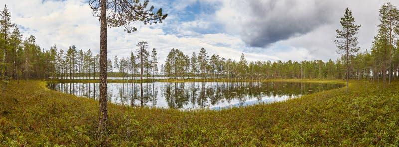 Paysage panoramique de la Finlande avec la forêt et le lac Enviro finlandais photos stock