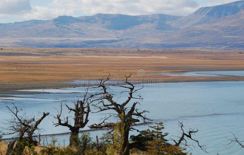 Paysage Patagonian images stock