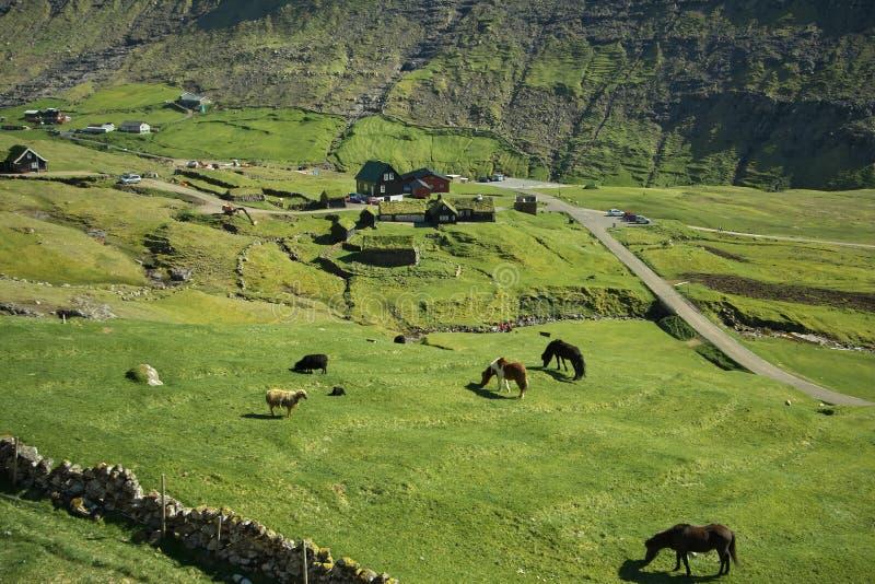 Paysage pittoresque de village Saksun sur l'île Streymoy des Iles Féroé photographie stock