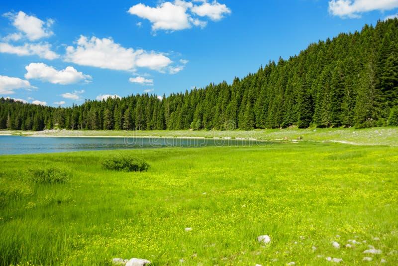 Paysage près de lac de montagne photos stock