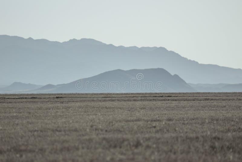 Paysage près du canyon de Charyn photographie stock libre de droits