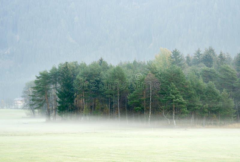 Paysage rêveur perdu en brouillard épais, Valle di Casies photo stock