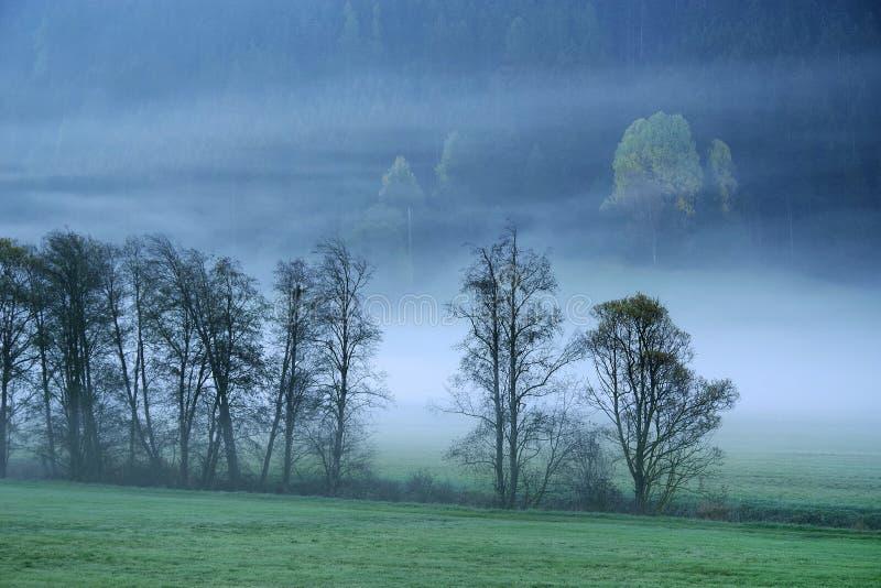 Paysage rêveur perdu en brouillard épais, Valle di Casies photos libres de droits