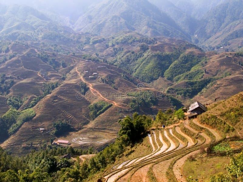 Paysage renversant de terrasse de riz photographie stock libre de droits