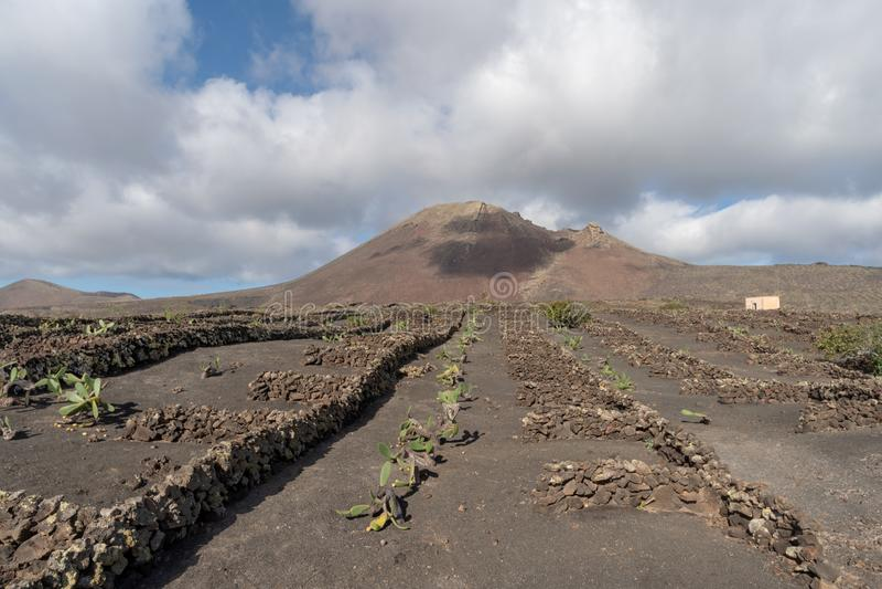 Paysage rocailleux de sol volcanique, île de Lanzarote, Espagne images stock