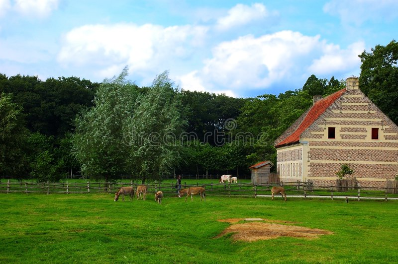 Paysage rural. photographie stock