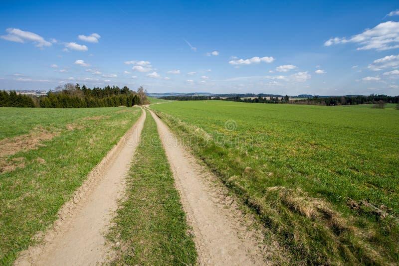 Paysage rural avec des arbres à côté des prés image libre de droits