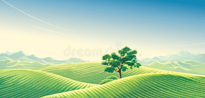 Paysage rural avec des champs de neige illustration stock