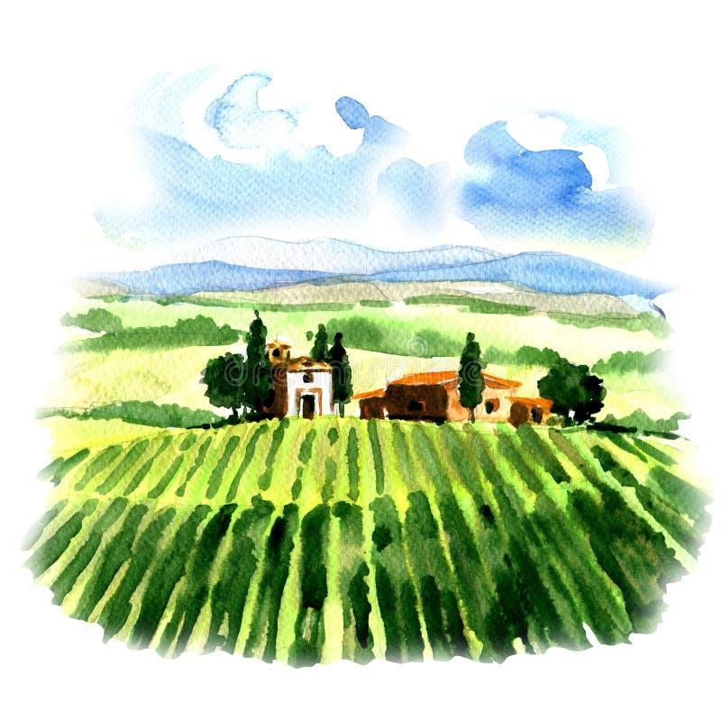 Paysage rural avec des champs vignoble et maison de campagne illustration stock