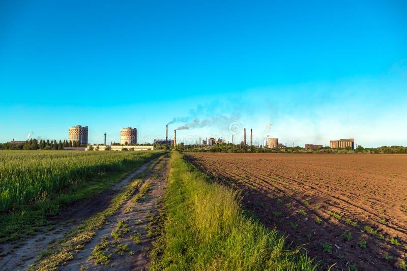 Download Paysage rural avec l'usine photo stock. Image du horizon - 45353252