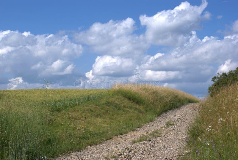 Paysage rural avec la route images stock