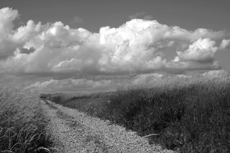 Paysage rural avec la route photo stock