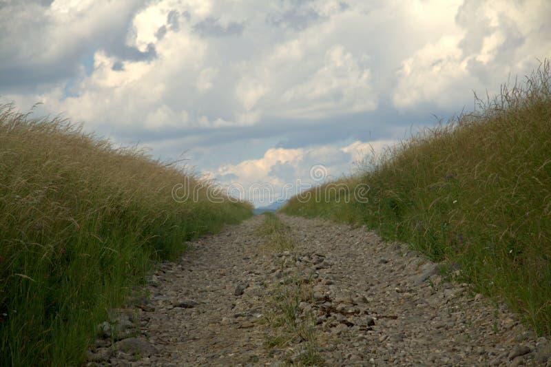 Paysage rural avec la route image libre de droits