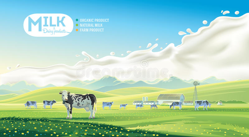 Paysage rural avec les vaches et l'éclaboussure illustration stock