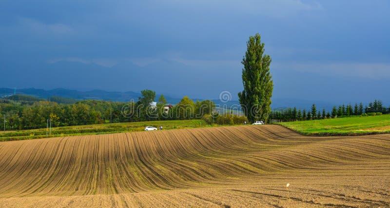 Paysage rural dans Biei, Japon photos stock