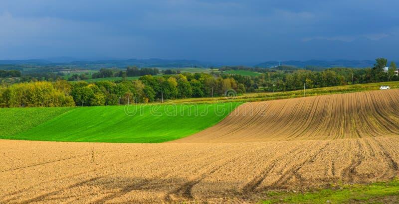Paysage rural dans Biei, Japon image stock
