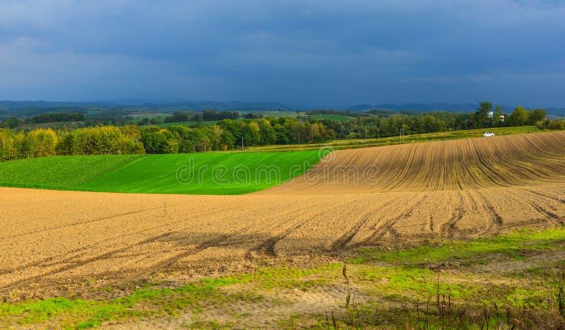 Paysage rural dans Biei, Japon photo stock