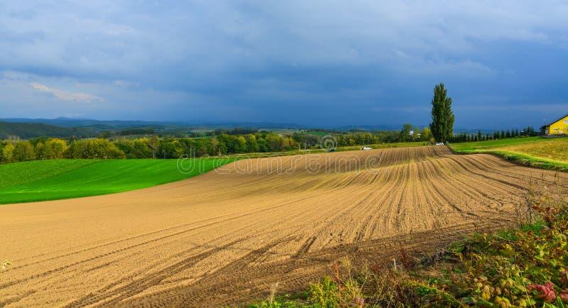 Paysage rural dans Biei, Japon photos libres de droits