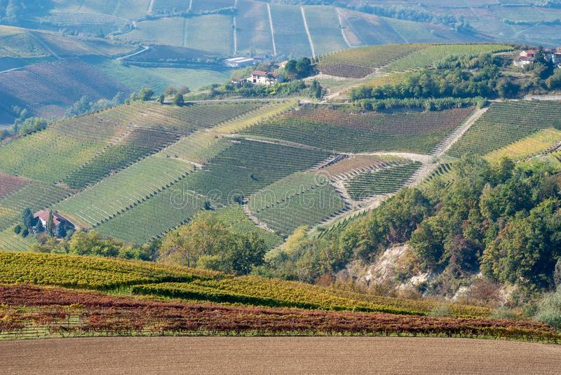 Paysage rural dans Langhe, Piémont, Italie photo libre de droits