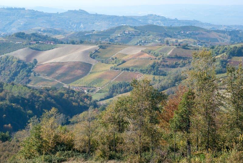 Paysage rural dans Langhe, Piémont, Italie images stock