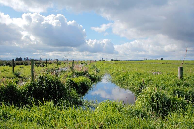 Paysage rural dans Washington State occidental images libres de droits