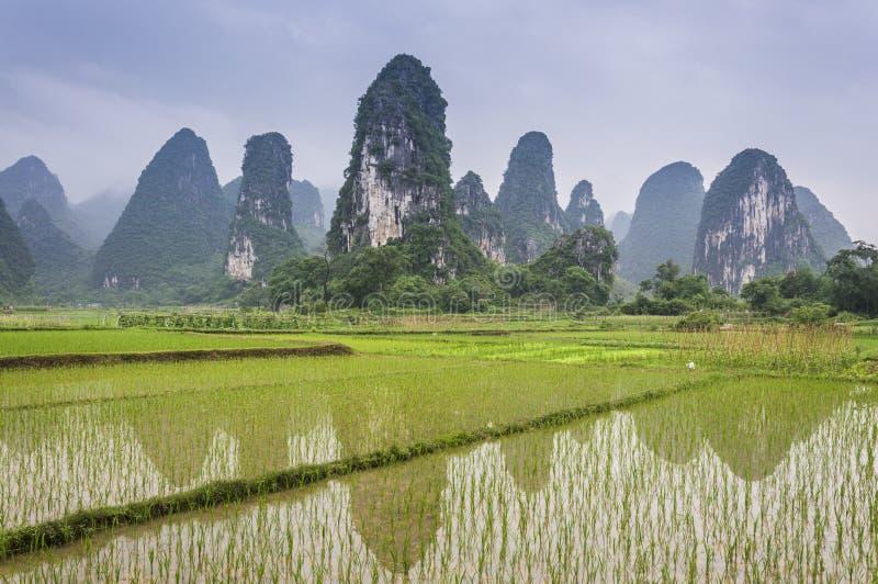Paysage rural de beau karst à Guilin, Chine photographie stock libre de droits