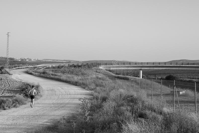 Paysage rural de route avec une formation de corresor image libre de droits