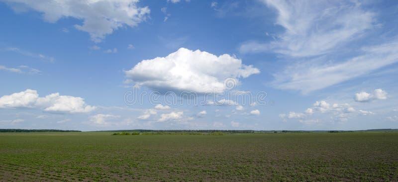 Paysage rural en Ukraine image libre de droits