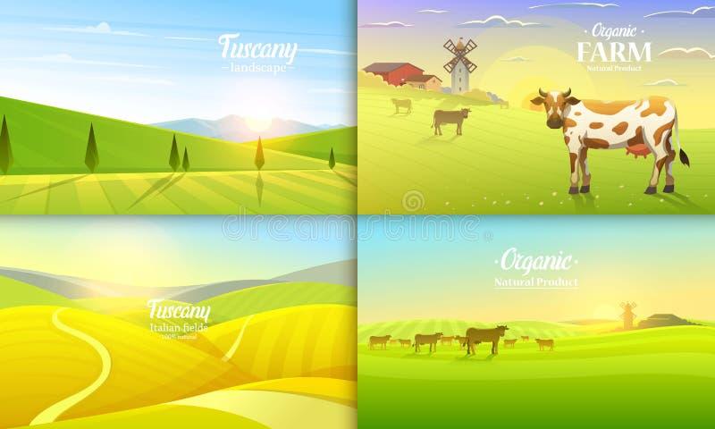 Paysage rural et vaches Agriculture de ferme Illustration de vecteur Affiche avec le pré, campagne, rétro village pour des infos illustration libre de droits