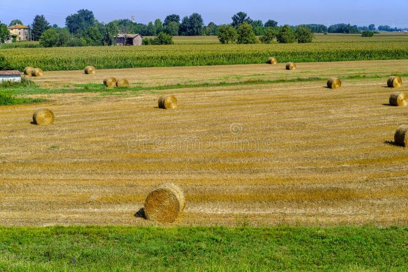 Paysage rural le long du chemin de cycle de PO photos stock
