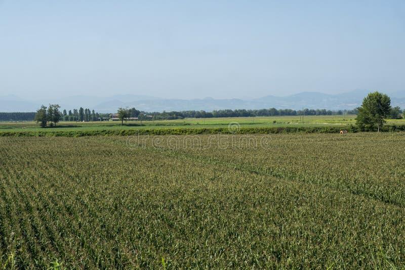 Paysage rural le long du chemin de cycle de PO image libre de droits