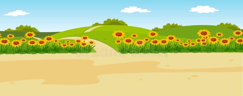 Paysage rural panoramique d'été images stock
