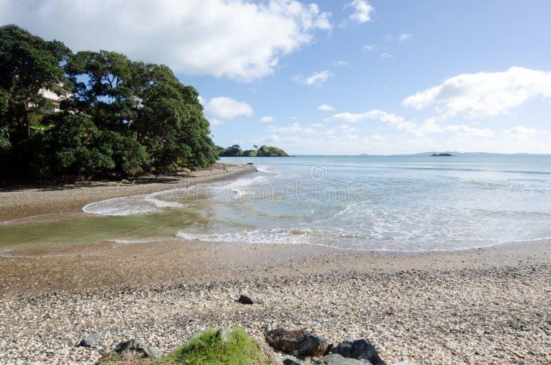 Paysage sauvage de la plage NZL de tonneliers image stock