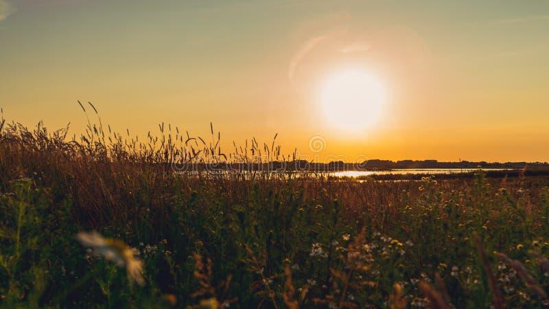 Paysage scénique de champ dans la lumière égalisante, avant coucher du soleil images libres de droits