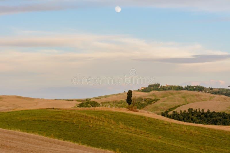 Paysage scénique de coucher du soleil avec l'arbre de cyprès, les collines molles, et la lune photos stock